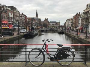 b_300_225_16777215_00_images_Schulleben_2017_In_Leiden_gelitten.jpg